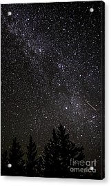 Perseid Meteor And Milky Way Acrylic Print