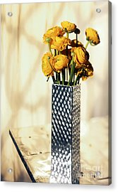 Persian Buttercup Acrylic Print by Tony Cordoza