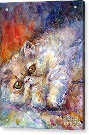Persian Cat Painting Acrylic Print