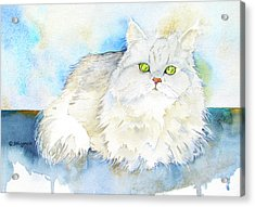 Acrylic Print featuring the painting Persian In Belgium by Jo Lynch