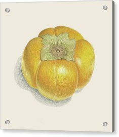 Persimmon Acrylic Print by Carlee Lingerfelt