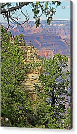 Perspective Of Grand Canyon Acrylic Print by Linda Phelps