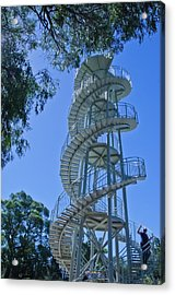 Perth Kings Park Double Helix Dna Tower  Acrylic Print