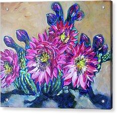 Petalos De Rosa Acrylic Print by Sheila Tajima