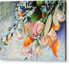 Petals And Peels Acrylic Print by Robynne Hardison