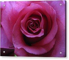 Petals Xxix Acrylic Print