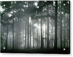 Petit Jean Fog Acrylic Print