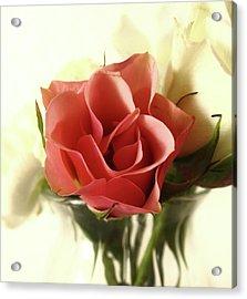 Petite Bouquet Acrylic Print