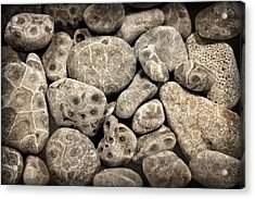 Acrylic Print featuring the photograph Petoskey Stones Vl by Michelle Calkins