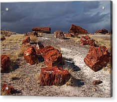 Acrylic Print featuring the photograph Petrified Forest National Park by James Peterson