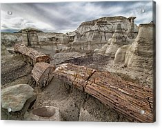 Petrified Remains Acrylic Print by Alan Toepfer