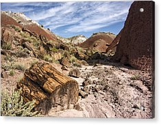 Petrified Wood In The Painted Desert Acrylic Print by Melany Sarafis
