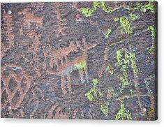 Petroglyph Wolf Attack Acrylic Print