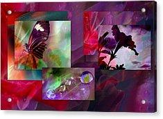 Petunia Collage Acrylic Print by Irma BACKELANT GALLERIES