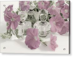 Petunias And Perfume - Soft Acrylic Print