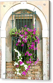 Acrylic Print featuring the photograph Petunias Through Wrought Iron by Donna Corless