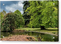 Petworth Lake With Dog Acrylic Print by Michael Hope