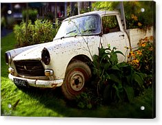 Peugeoted Acrylic Print by Jez C Self