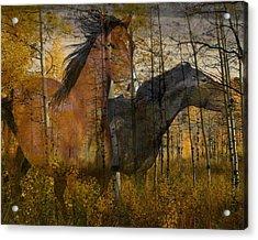 Phantom Grove Acrylic Print