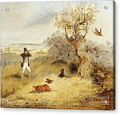 Pheasant Shooting Acrylic Print by Henry Thomas Alken