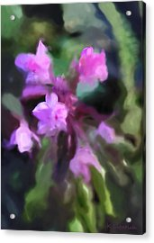 Philippine Orchid Abstact Acrylic Print by Kerri Ligatich