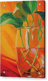 Philodendron In Glass Acrylic Print
