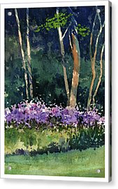 Phlox Meadow, Harrington State Park Acrylic Print