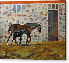 Phoenix And Her Foal Acrylic Print