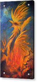 Phoenix Rising 1 Acrylic Print by Marina Petro