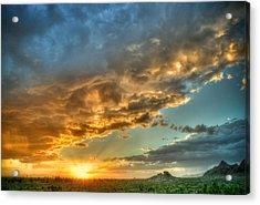 Phoenix Sunset Acrylic Print by Anthony Citro