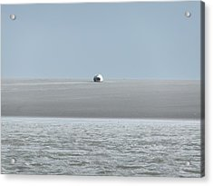 Acrylic Print featuring the photograph Phoque Blanc Roulant Au Banc by Marc Philippe Joly