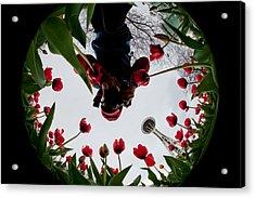 Photographer In Wonderland H084 Acrylic Print by Yoshiki Nakamura