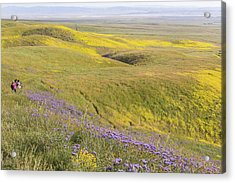 Acrylic Print featuring the photograph Photographing Carrizo by Marc Crumpler