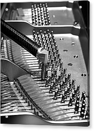 Piano Tuning Bw Acrylic Print