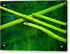 Pick Up Sticks Acrylic Print
