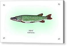 Pickerel Acrylic Print by Ralph Martens