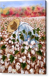 Picking Cotton Acrylic Print