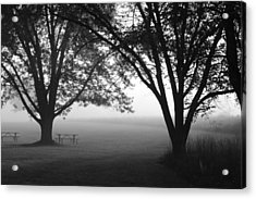 Picnic In The Fog Acrylic Print by Lauri Novak