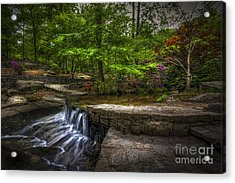 Picture This Acrylic Print by Marvin Spates
