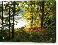 Picturesque Acrylic Print by Mark  France