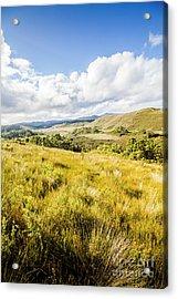 Picturesque Tasmanian Field Landscape Acrylic Print
