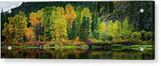 Acrylic Print featuring the photograph Picturesque Tumwater Canyon by Dan Mihai