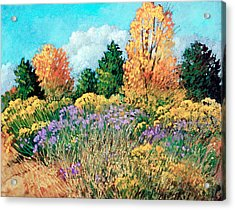 Picuris Acrylic Print by Donna Clair