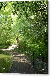Piedmont Park Path Acrylic Print by Utopia Concepts