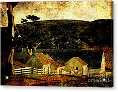 Pierce Point Ranch 18 . Texture Acrylic Print by Wingsdomain Art and Photography