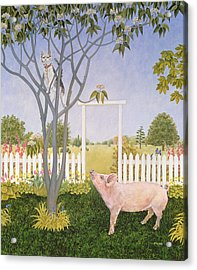 Pig And Cat Acrylic Print