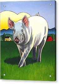 Pig Newton Acrylic Print