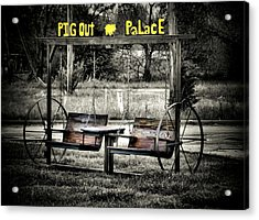 Pig Out Palace Acrylic Print by Karen Scovill