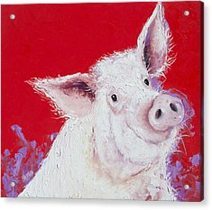 Pig Painting On Red Background Acrylic Print by Jan Matson