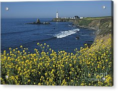 Pigeon Point Panorama Acrylic Print